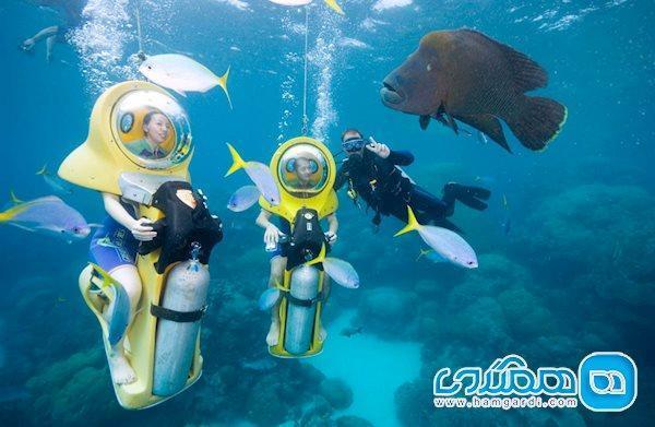 سد مرجانی، زیباترین میراث جهانی استرالیا