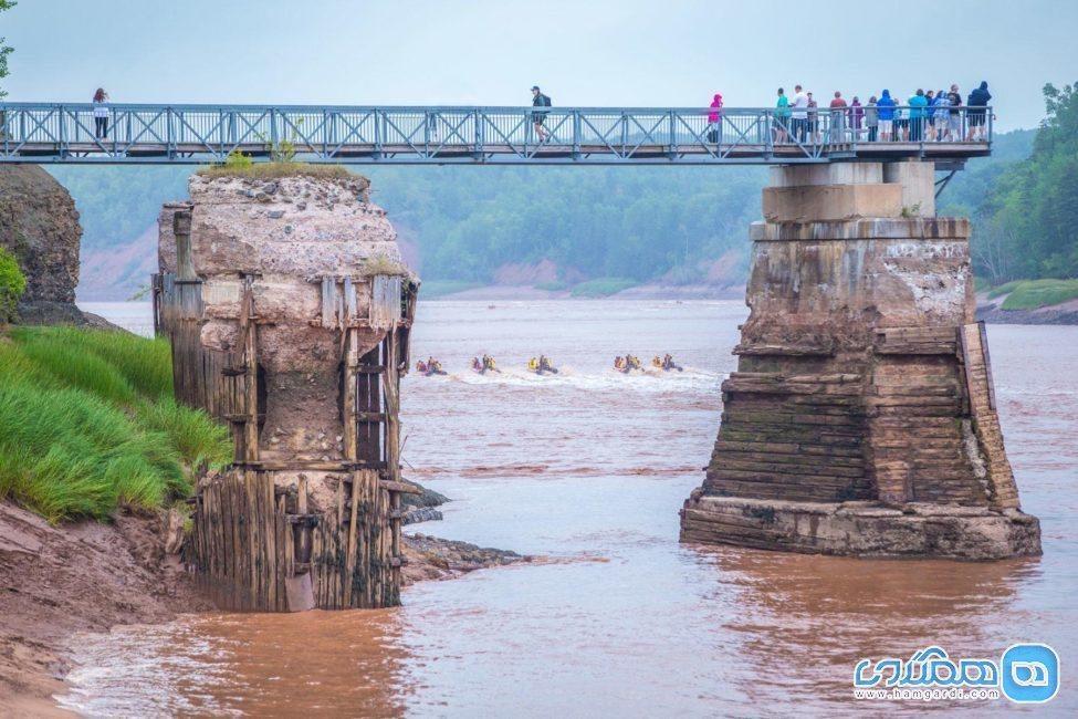 قایق رانی در آب های کم عمق رودخانه ، خارق العاده ترین سواریِ دنیا