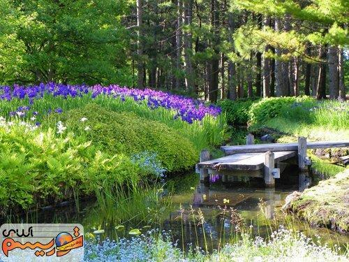 گردش در یکی از زیباترین باغ های گیاه شناسی جهان، تصاویر