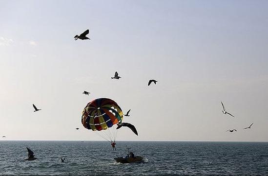 معرفی فرصت های گردشگری دریایی بوشهر در دوازدهمین نمایشگاه بین المللی