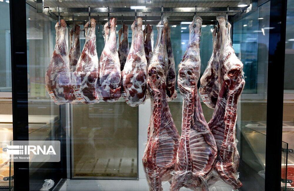 خبرنگاران دامداران شیروانی 25 درصد گوشت قرمز خراسان شمالی را فراوری می نمایند
