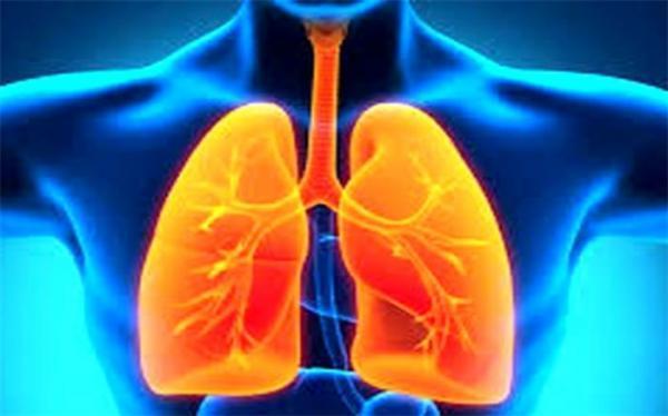 گیاهی که ریه هایتان را شست و شو می دهد